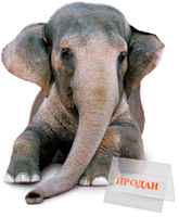 Купить слона